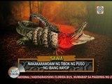 WATCH: Kuya Kim reports on crocodile swallowed by snake