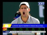 Djokovic wins Indian Wells final