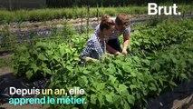 De journaliste à agricultrice, elle raconte son changement de vie