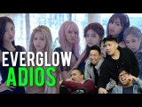 EVERGLOW. IS. THE. GREATEST. (ADIOS MV Reaction)