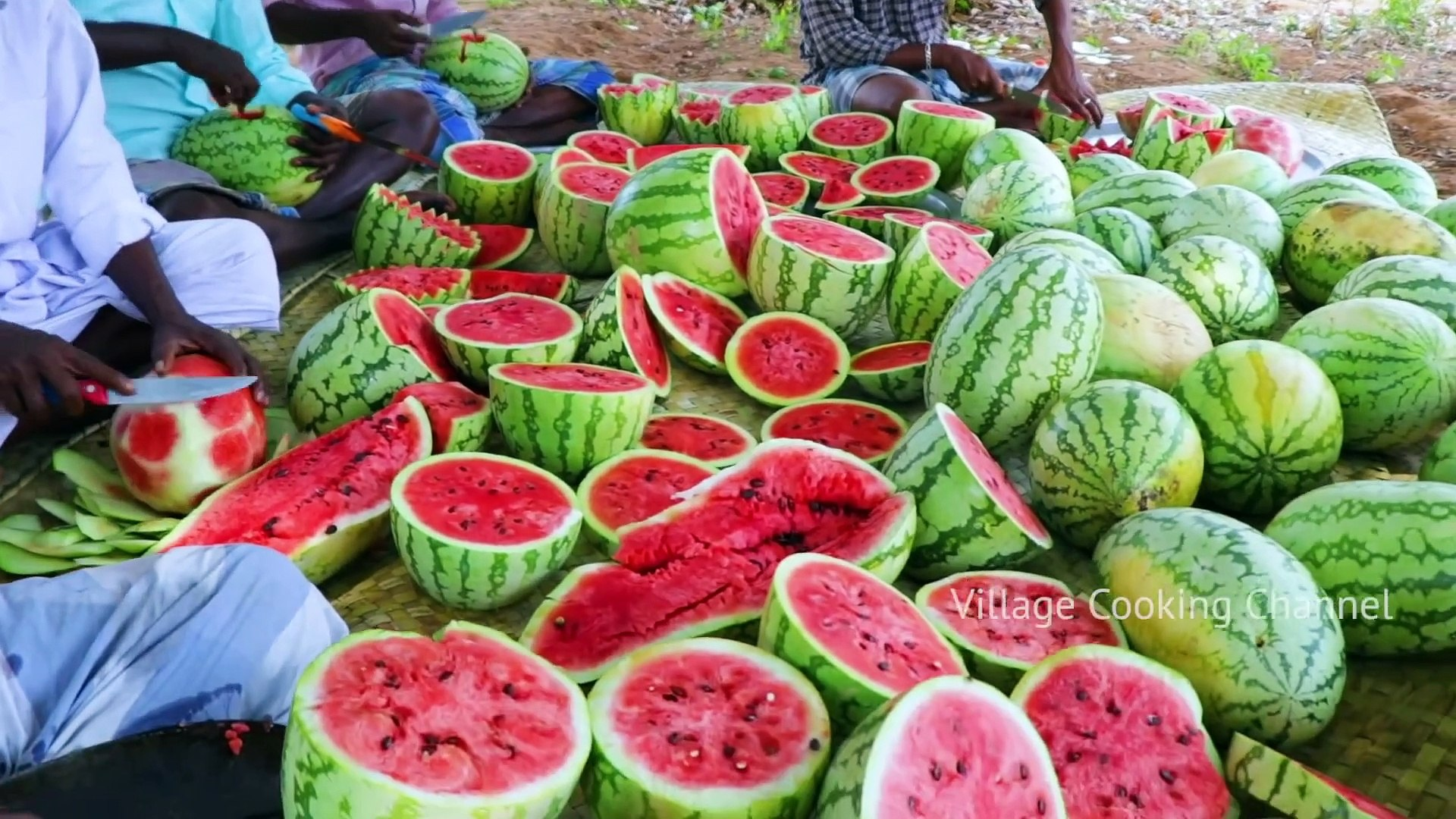 500 KG WATERMELON - Summer Health Drinks - WaterMelon Juice from Farm Fresh Fruits - Village Cooking