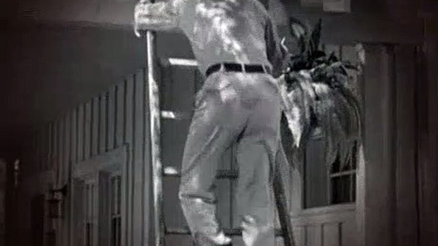 The Andy Griffith Show S02E09 Aunt Bee's Brief Encounter