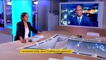 """Amazonie : la France doit """"changer de politique"""" en Guyane"""