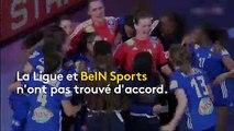 """""""On manque cruellement de reconnaissance"""" : les handballeuses françaises furieuses face la non-diffusion de leur championnat"""