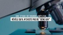 """Une étude ADN de grande ampleur révèle qu'il n'existe pas de """"gène gay"""""""