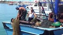 Balıkçılar palamutta umduğunu bulamadı - DÜZCE