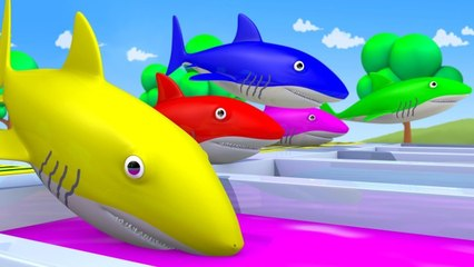 Baby Shark Nursery Rhymes to Learn Colors with  BABY SHARK SONG Baby Shark Learn Colors