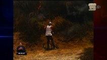 Incendios forestales aumentan en Quito