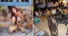 Cette femme a sauvé 97 chiens errants pendant le passage meurtrier de l'ouragan Dorian, aux Bahamas