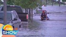 ¿Sabes cómo reaccionar a una inundación dentro de tu auto? Aquí los consejos básicos. | Todo Un Show