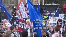 Brexit: protest outside Parliament ahead of Brexit showdown