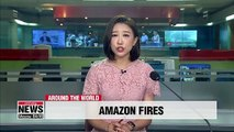 Area of Amazon rainforest as large as 4 mil. soccer fields destroyed by fire in August