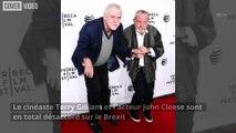 Le Brexit divise aussi les Monty Python