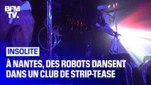 À Nantes, des robots dansent dans un club de strip-tease
