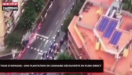 Tour d'Espagne : Une plantation de cannabis découverte en plein direct (Vidéo)