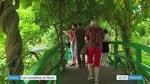 Giverny : les jardins de Monet sont en fleurs
