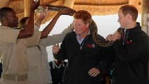 The British royal family's love affair with Africa