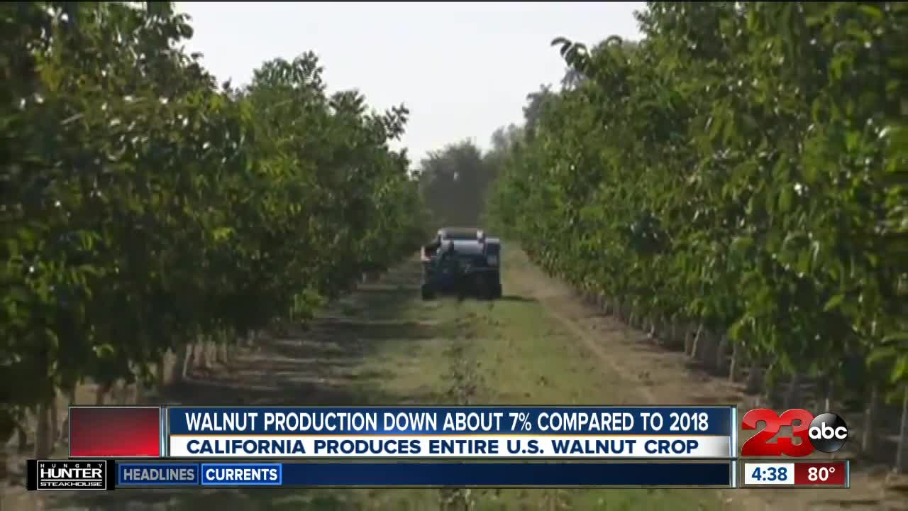 AG REPORT: USDA visits Grimmway Farms, fewer walnuts, increasing avocado demand