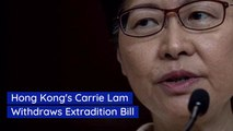 Hong Kong Protesters Successfully Eliminate Extradition Bill