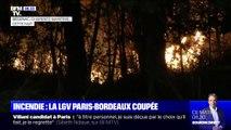 Un incendie de forêt en Charente-Maritime provoque le déroutement de la LGV Paris-Bordeaux