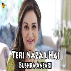 Teri Nazar Hai Bushra Ansari Song Gaane Shaane