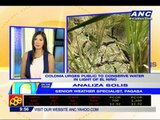 PAGASA: El Nino may last to early 2015