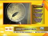 Recipe: Sandy Daza's ginataang sitaw with tinapang galunggong