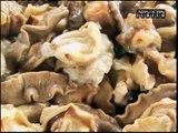Filipino dish: Sisig made of snails