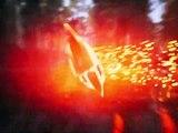 Hunter's Arena: Legends - Cinematic Trailer