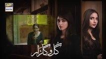 Gul-o-Gulzar Episode 14 promo ARY Digital Drama