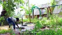 PRAWNS FRY MASALA - Traditional Village Cooking - Prawns Recipe - Cooking Shrimp Recipe Village Food