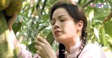 Tiếng sét trong mưa tập 7 full trọn bộ live - THVL1 Phim Việt Nam