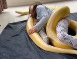 Cette fillette fait un câlin à son serpent dans sa chambre !