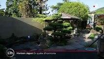 Feuilleton : horizon Japon (5/5)