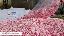 54.000 faux testicules ensanglantés déversés devant le siège d'Aoste