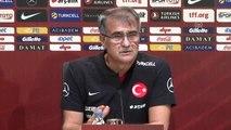 A Milli Futbol Takımı Teknik Direktörü Güneş (2)