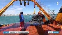 Environnement : des récifs en 3D au Cap d'Agde pour favoriser la biodiversité