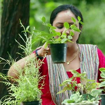 Uppum Mulakum | Flowers | Ep # 938