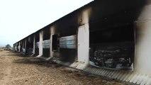 Un incendio provoca la muerte de 25.000 pollos en una nave de La Calahorra, en Granada