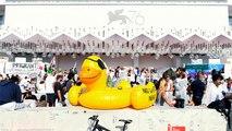 Venise : Le tapis rouge de la Mostra occupé par des manifestants