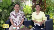 Dr. Rosario explains how mosquito fish species could fight the spread of dengue   Salamat Dok