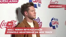 Niall Horan's Song About Hailee Steinfeld