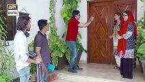 Bulbulay Season 2 Episode 18 - ARY Digital Drama