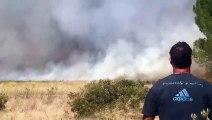 Incendie A9 8 sept 2019