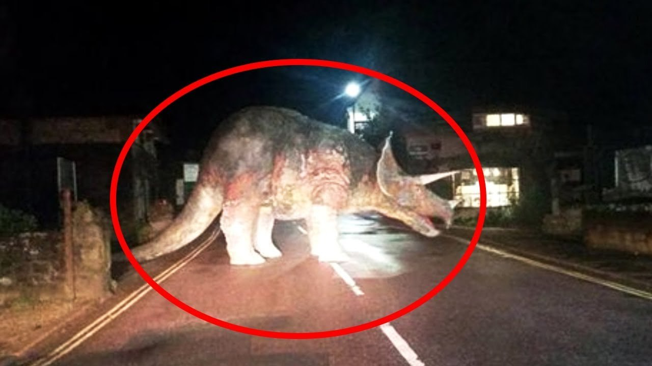 10 Dinosaurs Caught On Camera In Real Life Video Dailymotion
