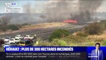 Hérault: les images des blocages sur l'A9, coupée à cause des incendies aux abords de l'autoroute