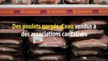 Des poulets gorgés d'eau vendus à des associations caritatives