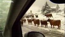 1. Schneefall in den Tiroler Alpen