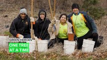 Green Heroes: Sometimes all it takes is planting a tree