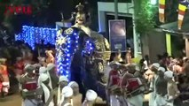 Video Captures Elephant Rampaging Through Streets Causing Mass Chaos During Sri Lankan Festival